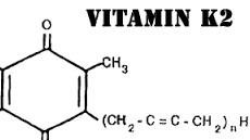 vitamin_k2_1